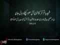 Clip - کلپ-خونِ شہید باقر النمرؒ آل ِ سعودکے دامن کو پکڑےگا - Farsi sub Urdu