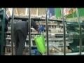 Unique Boycott Style of Israeli Goods in Tesco - English