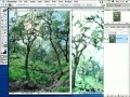 photoshop 8 tutorial - 35watercolors-english