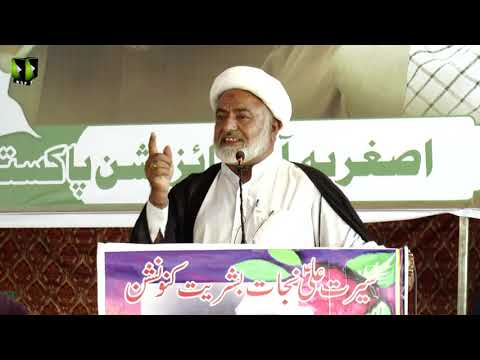 [Speech] Moulana Mohsin Mehdavi    Youm-e-Ali (as)   Asghariya Org. Convention 2019 - Sindhi