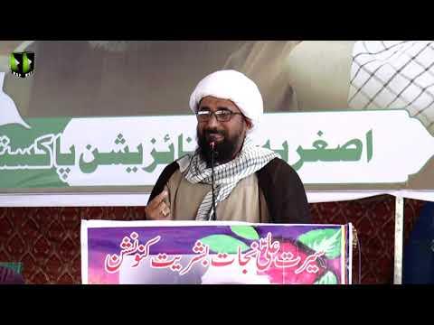 [Speech] Moulana Ali Baksh Sajjadi   Youm-e-Ali (as)   Asghariya Org. Convention 2019 - Urdu