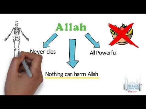MADRASA - Allah is always Alive - B11   English
