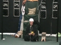 Muharram 1430 - H.I. Hayder Shirazi - Freedom - Majlis 13 - English