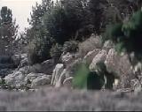 Film sur la Sainte Marie - 10 sur 11 - Arabic sub french