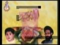 Shaheed Foundation Pakistan Projects and Accomplishments - Urdu