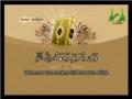 Al-Quran - Para 21 - Part 3 - Arabic sub English