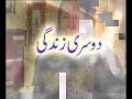 [Last Episode] سیریل دوسری زندگی Serial Second Life - Episode 44 - Urdu