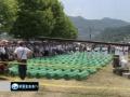 Victims mark Srebrenica genocide anniv Mon Jul 11, 2011 11:57PM English