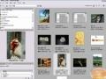 Adobe Bridge Tutorial Learn the basics of the Bridge - English