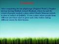 The Event of Ghadir Khumm - Urdu & English