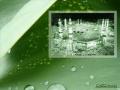 Quran Surah 87 - Al-Aala...The Most High - ARABIC with ENGLISH translation