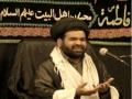 Shia killing in Pakistan - Maulana Dr. Sayyed Zawwar Hussain Naqvi - Norway [URDU]