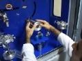 A Gateway to Technology-A Program on Stem Cells - دریچہ - Urdu
