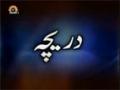 [12 Feb 2013] A Gateway to Technology - Daricha - دریچہ - Urdu