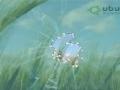 GIMP - Broken glass gimp tutorial - English