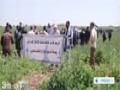 [28 Mar 2014] Gazans mark Land Day - English