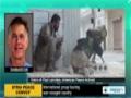 [13 Apr 2014] International peace convoy touring war-ravaged Syria - English
