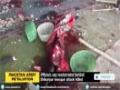 [15 Feb 2015] Pakistani officials say mastermind behind Shikarpur mosque attack killed - English