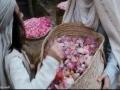 [P.04] Muhammad (2015) Official Trailer - Majid Majidi تیزر فیلم محمد (ص) مجیدی1 - All