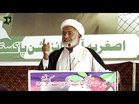 [Speech] Moulana Mohsin Mehdavi  | Youm-e-Ali (as) | Asghariya Org. Convention 2019 - Sindhi