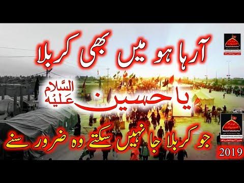 Araha Hu Mai Bhi Karbala - Shadman Raza   Noha - Muharram   1441/2019 Urdu