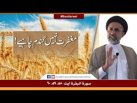 Maghfirat Nahi Gandum Chahiay! || Ayaat-un-Bayyinaat || Hafiz Syed Muhammad Haider Naqvi - Urdu