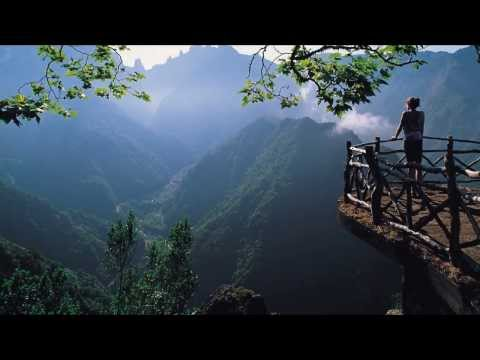 Nature Beautiful short video HD | All Languages