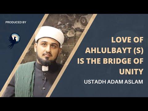 Arba'een Reflections: Love of Ahlulbayt (a) is the bridge of unity   Sunni Imam   Arba'een Walk 2021 - English