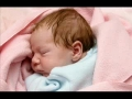 Cute Video - Hush Little Baby - English