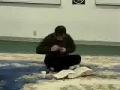 Quran Tafseer - Sura Aal-e-Imran - English