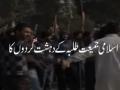 Jamiat attack on Hussain (as) Day at Punjab University - 22 December 2011 - Urdu