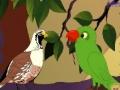 Animation - Ek tota aur ek maina - Urdu