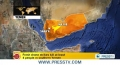 [23 Jan 2013] US drone war killing innocents: Hisham Jaber - English