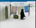 Kids Cartoon - PINGU - Pingu Teases Pinga - All Languages Other