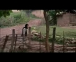 The Color Of Paradise - Part VI - Majid Majidi - Movie - Farsi with English sub