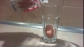 Glowing Bouncy Egg - vinegar and egg - Rubber Egg Science Experiment - English